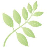 Mimaki eco friendly